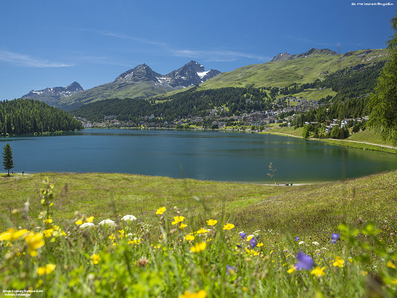 Cycling trip along Inn Cycle Route from St. Moritz to Innsbruck or Rosenheim