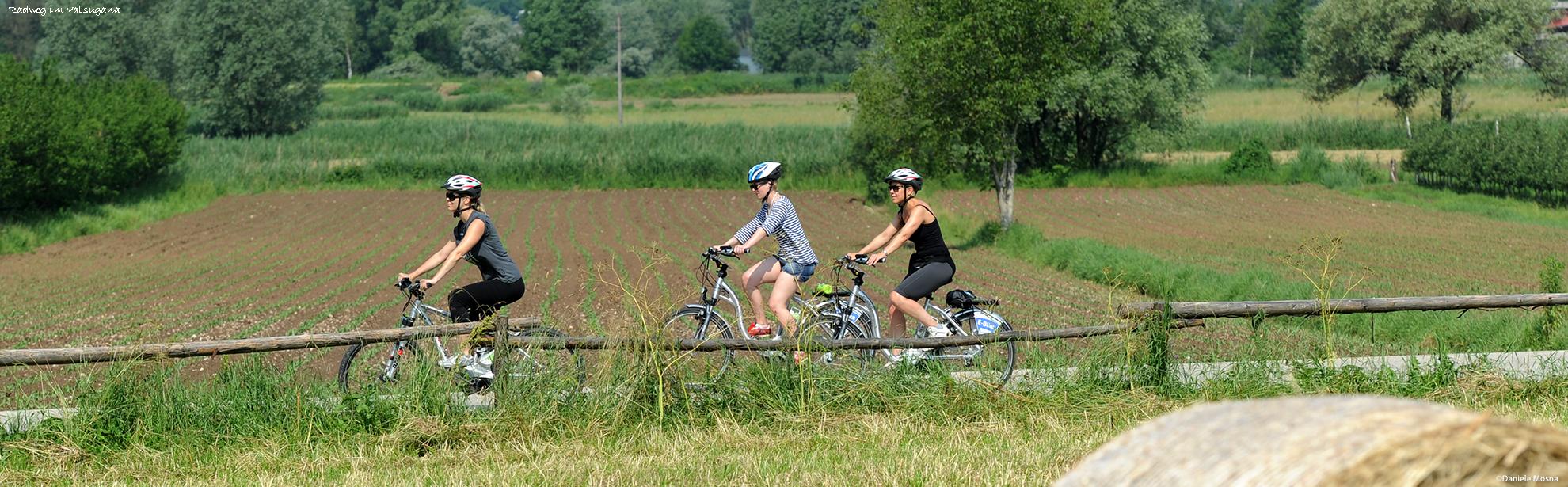 Oklassfoto-Daniele-Mosna_E-bike-ciclabile-con-fieno_351